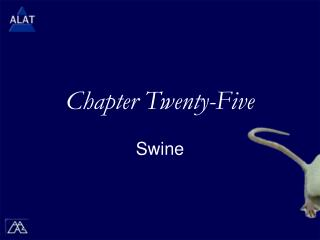 Chapter Twenty-Five