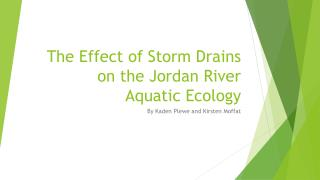 The Effect of Storm  D rains on the Jordan River Aquatic Ecology