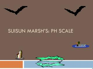 SUISUN MARSH'S: pH scale