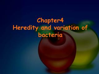 Chapter4 Heredity and variation of bacteria