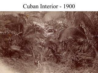 Cuban Interior - 1900