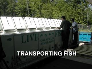 TRANSPORTING FISH
