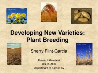 Developing New Varieties: Plant Breeding