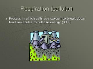 Respiration (cellular)