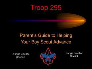 Troop 295