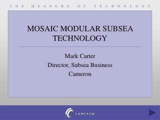 Mosaic Modular Technology