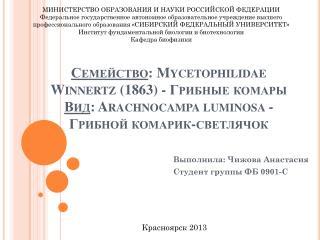 Выполнила: Чижова Анастасия Студент группы ФБ 0901-С