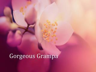 Gorgeous  Grampa