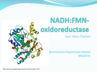 NADH:FMN- oxidoreductase