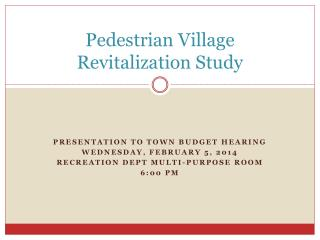 Pedestrian Village Revitalization Study