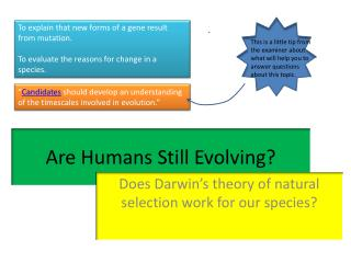 Are Humans Still Evolving?