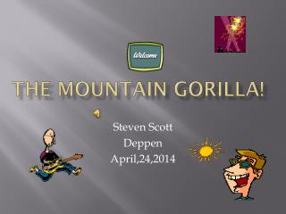 The mountain gorilla!