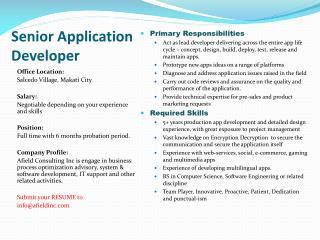 Senior  Application Developer