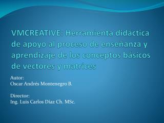 Autor: Oscar Andrés Montenegro B. Director: Ing. Luis Carlos Díaz  Ch. MSc.