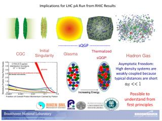 Implications for LHC  pA  Run from RHIC Results