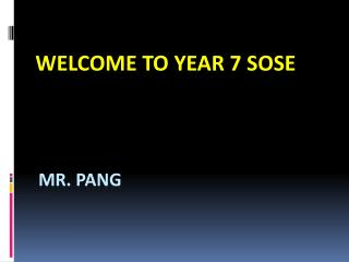 Mr. pang
