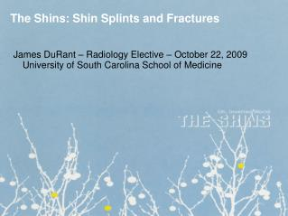 The Shins: Shin Splints and Fractures
