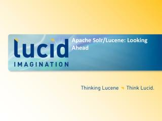 Apache Solr/Lucene: Looking Ahead