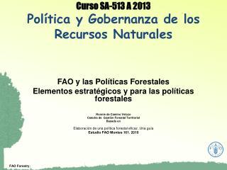 Curso SA-513 A 2013 Política y Gobernanza de los Recursos Naturales