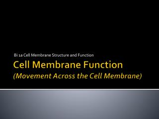 Cell Membrane Function (Movement Across the Cell Membrane)
