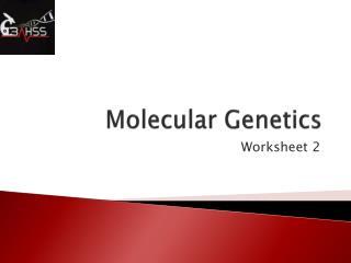 ppt name fruit fly genetics worksheet powerpoint presentation id 497352. Black Bedroom Furniture Sets. Home Design Ideas