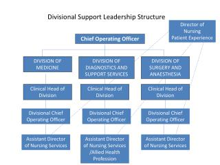Divisional Support Leadership Structure