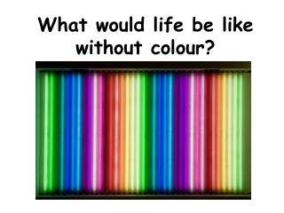 What would life be like without colour?