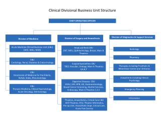 Clinical Divisional Business Unit Structure