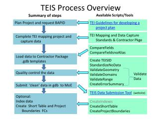 TEIS Process Overview