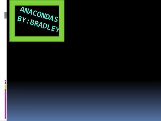 Anacondas by:Bradley