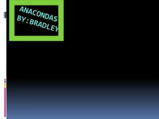 Anacondas by:Bradley
