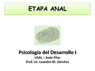 ETAPA ANAL