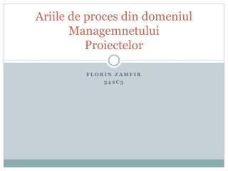 Ariile  de  proces  din  domeniul Managemnetului Proiectelor