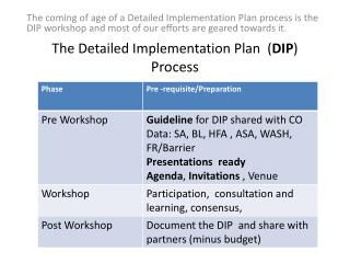 The Detailed Implementation Plan  ( DIP )  Process