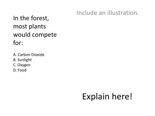 In the forest, most plants would compete for: A. Carbon Dioxide B. Sunlight C. Oxygen D. Food