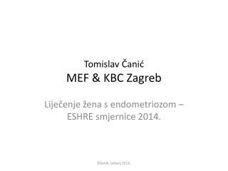 Tomislav Čanić MEF & KBC Zagreb
