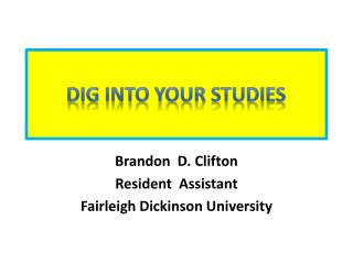 Dig into your studies