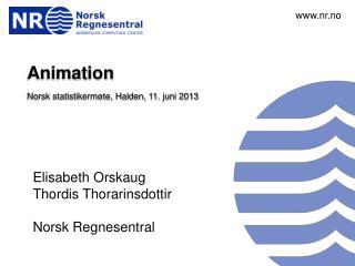 Animation Norsk statistikermøte, Halden,  11.  juni 2013