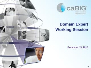 Domain Expert Working Session
