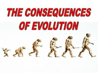 THE CONSEQUENCES OF EVOLUTION