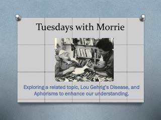tuesdays with morrie culture essay Mitch goes on to speak of how morrie tuesdays with morrie book review english literature essay morrie reiterates that we ought to discard culture if.
