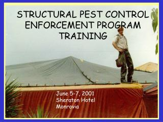 Structural Training 2001
