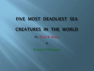 FIVE  most  deadliest  sea  creatures  in  the  world