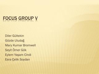 FOCUS GROUP V