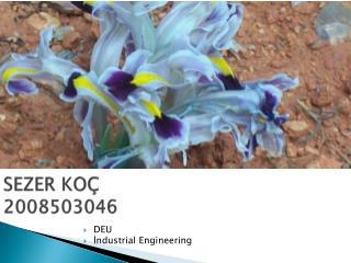 SEZER KOÇ 2008503046