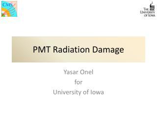 PMT Radiation Damage