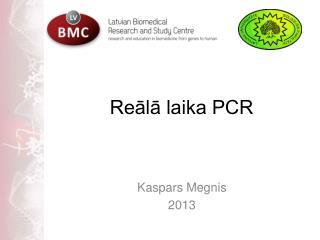 Reālā laika PCR