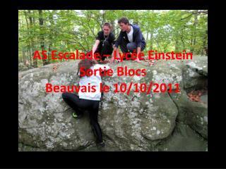 AS Escalade – Lycée Einstein Sortie Blocs Beauvais le 10/10/2011