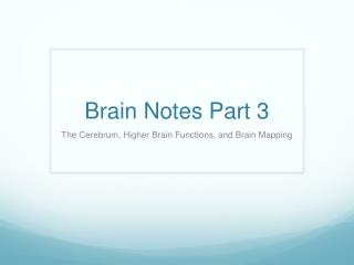 Brain Notes Part 3