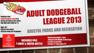 ADULT DODGEBALL LEAGUE 2013